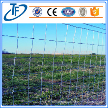 Professional manufacturer cheap galvanized wire farm fence for cattle/sheep