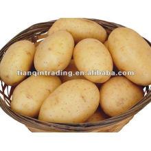 2012 свежий картофель