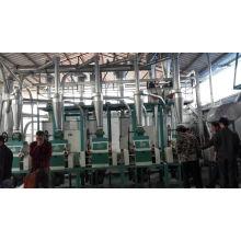Fábrica de farinha de trigo de 30-50tpd