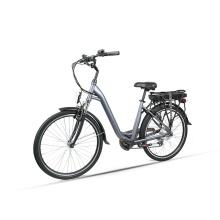 OEM Bike 250W Brushless Rear Hub Motor Electric Bicycle