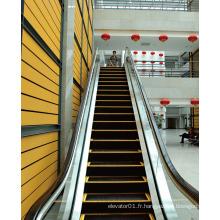 Intérieur Vvvf Commercial Escalier Escalier Passager Fabricant