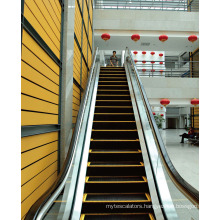 Indoor Vvvf Commercial Passenger Escalator Manufacturer
