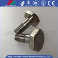 High Temperature Tantalum Screw for Vacuum Furnace