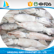 wholesale frozen baby squid at low price