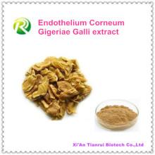 Extrato de Corneum Gigeriae Galli de Endothelium Natural de alta qualidade 100%