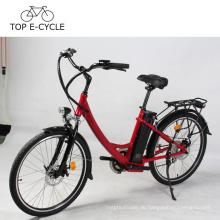 Livelytrip elektrisches Fahrrad buntes E Fahrrad DIY Stadt E-Bike elektrisches Fahrrad für die Dame hergestellt in China