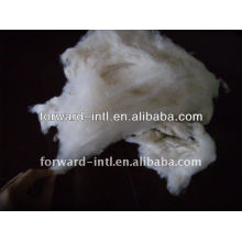 100% pure dehaired cashmere fiber