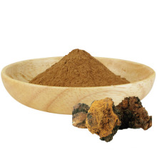 Polissacarídeo 30% de extrato de cogumelo Chaga em pó