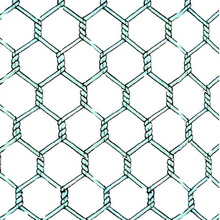 Cheap Electro Galvanized Hexagonal Wire Netting