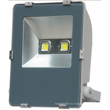 85-265V Bridgelux Chip 100W Blanco LED Outdoorfloodlight