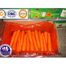 2014 frische Karotten Größe S & M Kartonverpackung