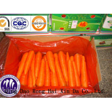 2014 fresh carrots size S&M carton packaging