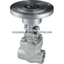 Válvula de compuerta de acero forjado F304 / F316 con Sw