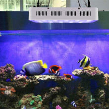 Venta al por mayor 165W Fish Tank Aquarium Led Light