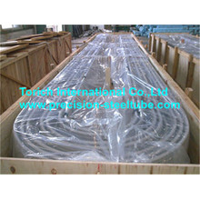 U Bending Stainless Steel Tubing SA213