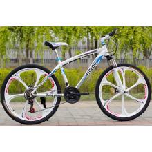 Bicicleta de montaña de aleación de magnesio de una pieza (FP-MTB-ST017)
