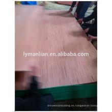 chapa de madera de reconocimiento de venta caliente chapa de madera de reconocimiento gurjan / keruing chapa de madera de álamo para el mercado de la India