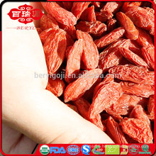 organic goji berries dry fruit wholesaler