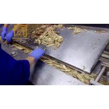 Thunfisch-Abfüllmaschine in Dosen