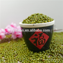 ALIBABA UTILISÉ EXCLUSIVEMENT Green haricots mungo (GF2)