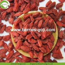 Factory Supply Nutrition Torkad Bio Wolfberry