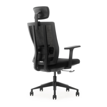 10 Years manufacturer for Height Adjustable Office Chair Adjustable Height Active Sitting Chair Ergonomic Swivel Chair export to American Samoa Factory