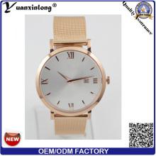 Parte posterior del acero inoxidable relojes hombres, ver caso Slim, YXL-028 Japan Movt Quartz Watch
