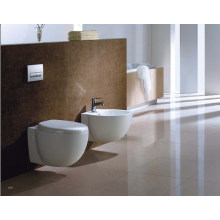 Reliable Washdown Wall Hung Toilet (DS1001)