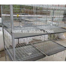 advanced automatic poultry equipment for broiler chicken farm