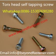 Torx Schrauben
