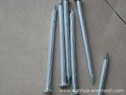Twist Shank Concrete Nails Price