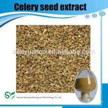 Venta caliente Extracto de semilla de apio / Apigenin 98%