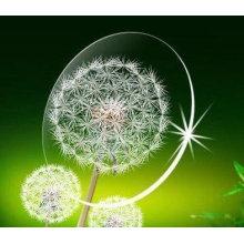 1.56UV400 Shmc Verde Lente óptica