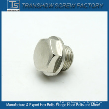 Nickle Plated Big Flange Head Bolt