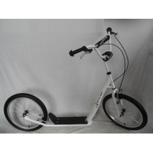 "20"" Steel Frame Kick Scooter (H2020)"