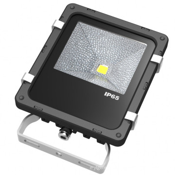 Bridgelux Chip Outdoor 10W LED Floodlight 5 Year Warranty