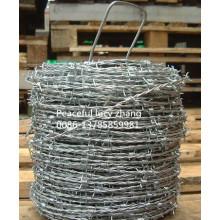 Verzinkte oder PVC-beschichtete Stacheldraht-Herstellung