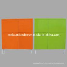 Haut brillant meubles armoire / hygiénique (1407)