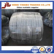 Galvanzied Wire / Electro galvanisé fil de fer / fer Wrie