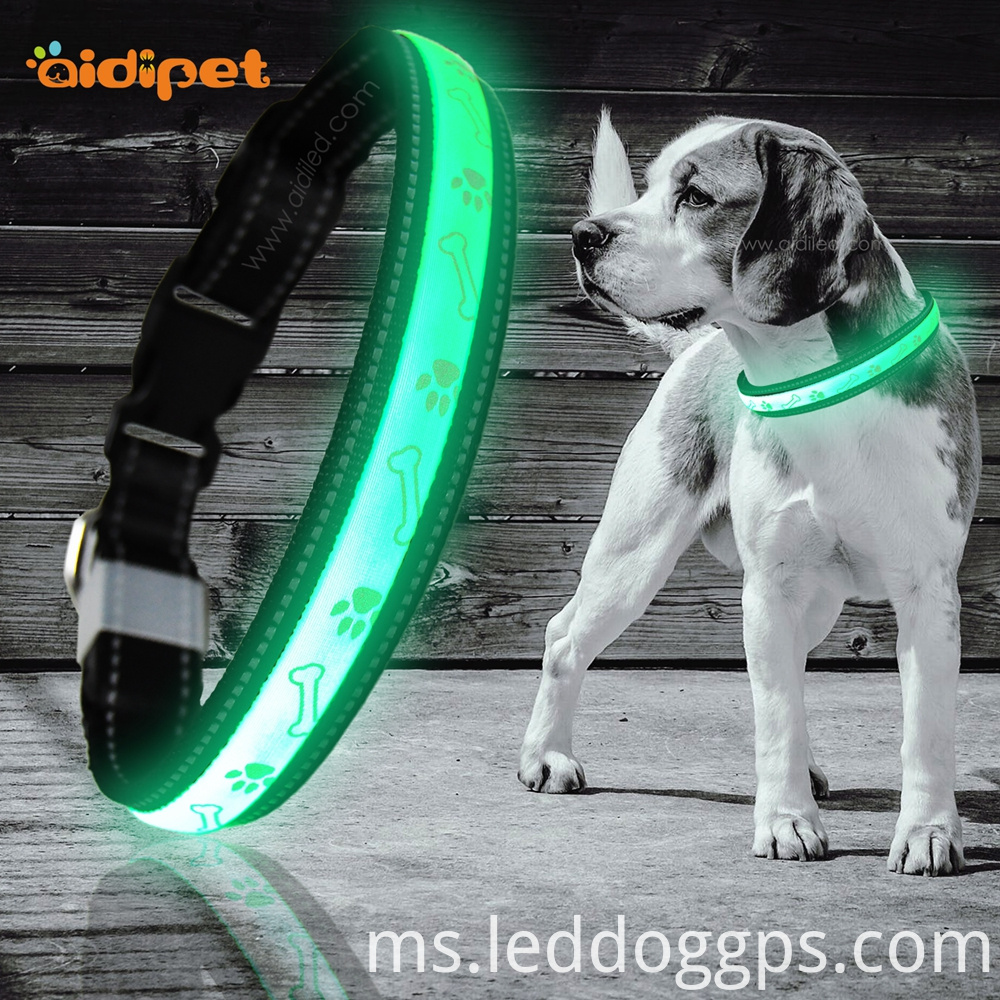 Best Led Flashing Dog Collar
