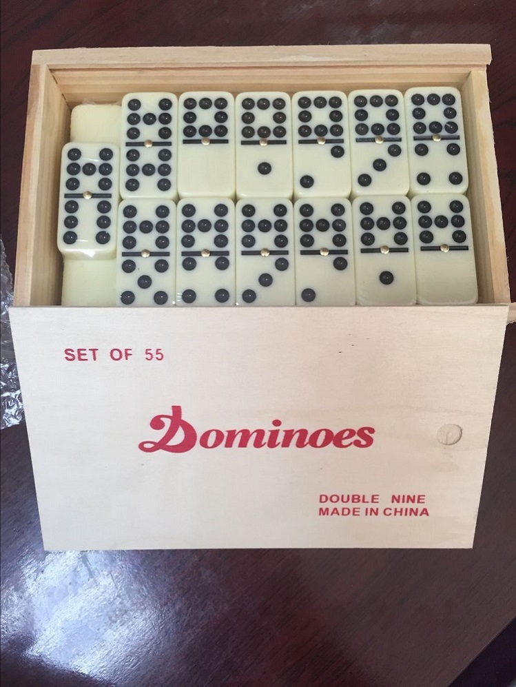 Promotion Gift Toys Plastic Double 9 Dominoes