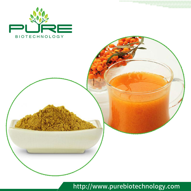 Freeze Dried Sea Buckthorn Juice Powder