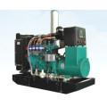 Энергии 100kva 80kw индукции цифровой питание метан Биогаз генератора двигателя