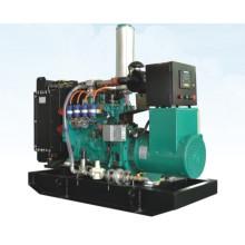 Générateur de gaz de secours refroidi à l'eau de 50kw Googol