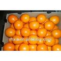 Список пупок апельсины желтые фрукты