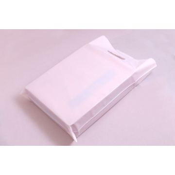 Eco-Friendly Customizable Printed Cheap Poly Packing Bag/Mailer/Envelope