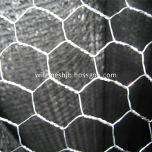 25mmx1mx45m Hexagonal Wire Mesh For Poultry Coop