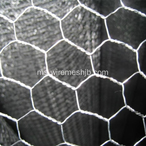 25mmx1mx45m Hexagonal Wire Mesh For Coop