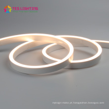 Melhor 5050 impermeável ao ar livre 2450 LED Flex Neon