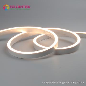 Le meilleur Néon extérieur flexible 5050 24V LED Flex